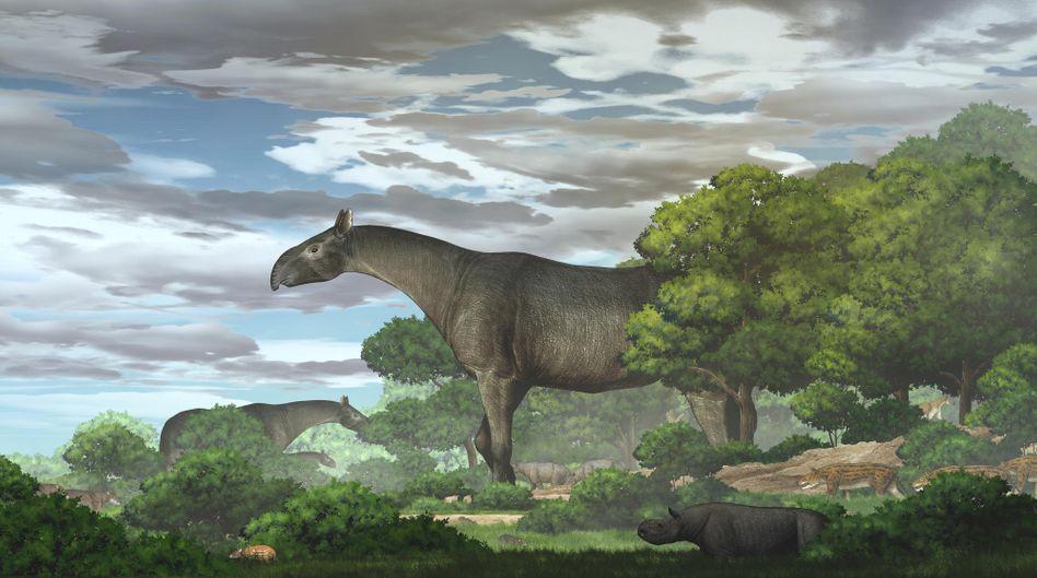 Illustration: So könnte Paraceratherium linxiaense ausgesehen haben