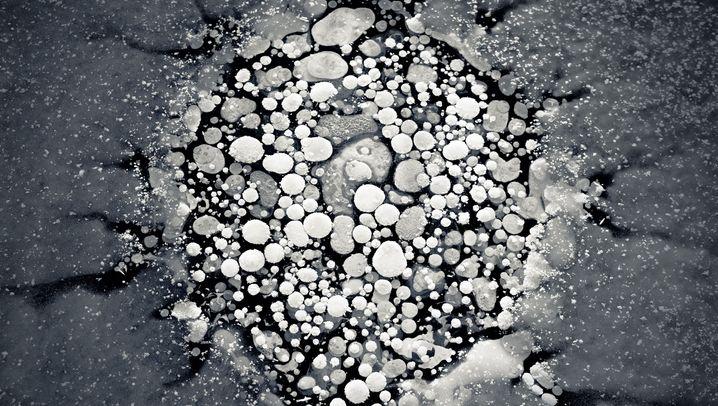 Hunderte Blasen: Kleine Kunstwerke