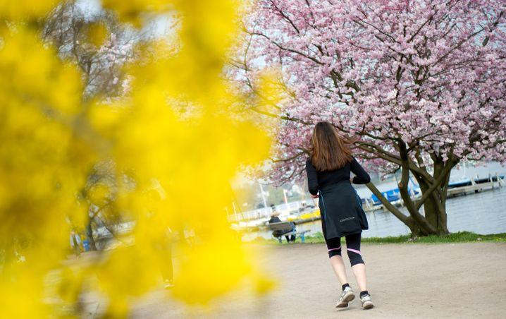 Joggen bei Kirschblüte: Der Winterspeck muss weg