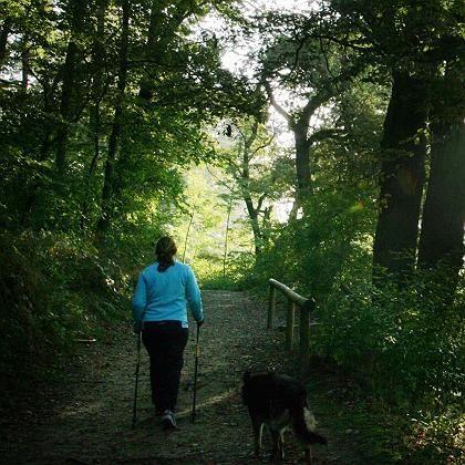 Walkerin im Wald: Stabil auf Calmund-Level