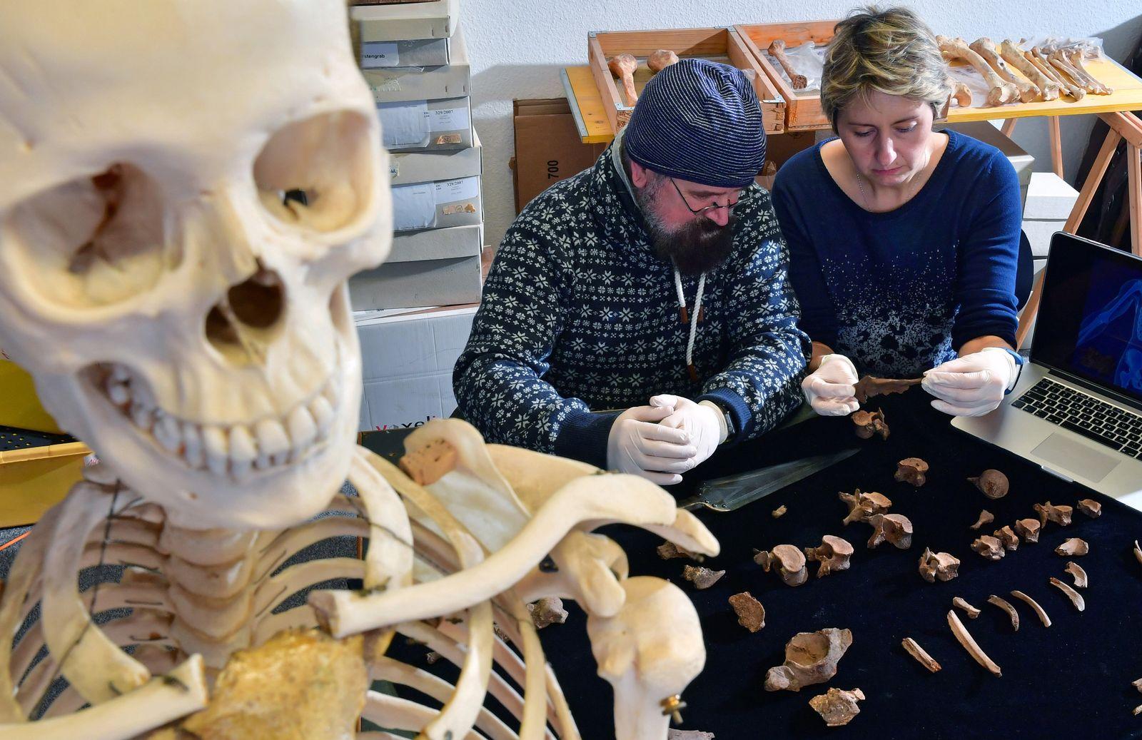 Krimi aus der Bronzezeit - ältester Fürstenmord