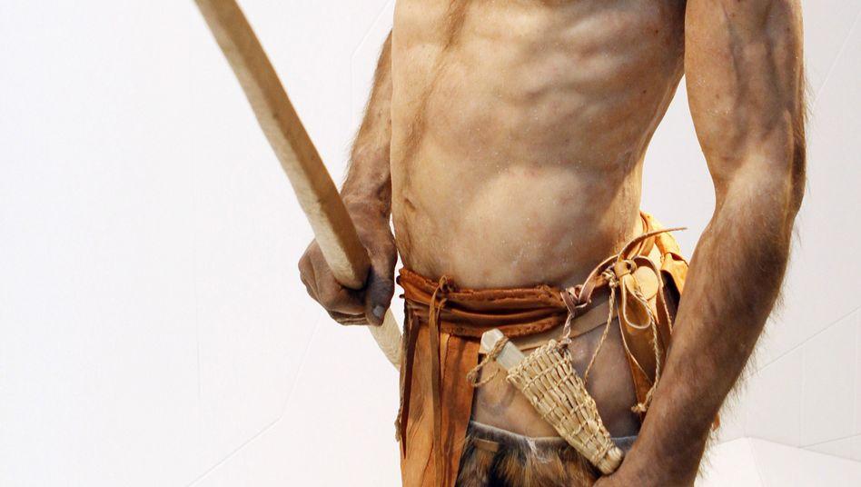 Künstlerische Nachbildung von Ötzi: Der Gletschermann starb mit Mitte Vierzig