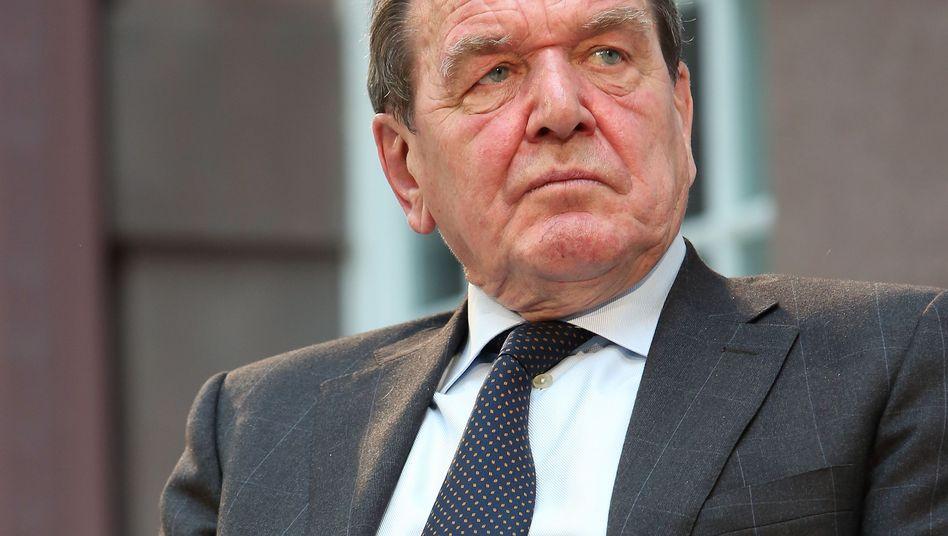 Altkanzler Schröder (im Feb. 2014): Verständnis für Russland