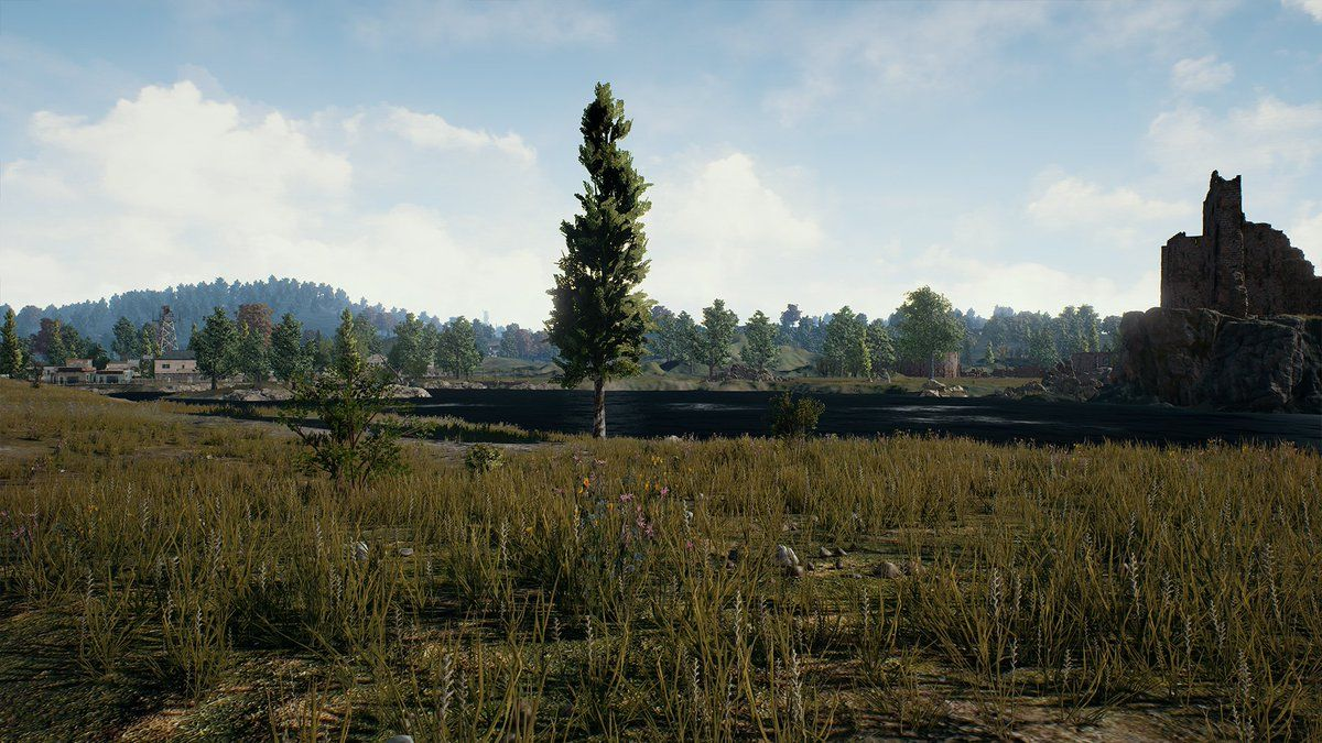 NUR ALS ZITAT Screenshot PlayerUnknown`s Battlegrounds