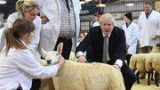 Briten wollen Agrarsubventionen an Klimaschutz knüpfen