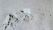Der Tote auf dem Mond