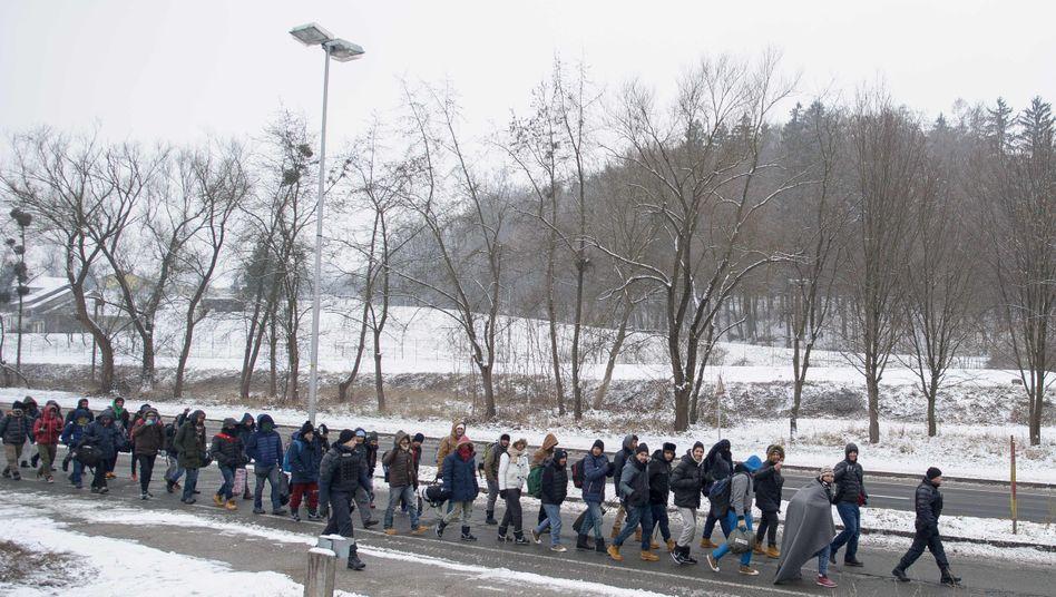 Flüchtlinge an der slowenisch-österreichischen Grenze: Noch keine Obergrenze