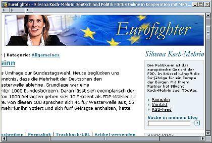 """Eurofighterin Koch-Mehrin: """"Gehen Sie mit Guido Wohnmobil fahren!"""""""