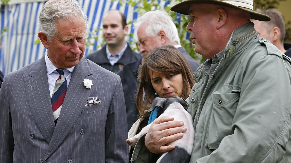 Prinz Charles in Deutschland: Biobauer und Schweinestreichler