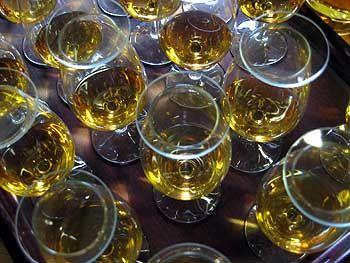 Vor dem Tasten kommt das Nosen: Das Aroma des Whiskys kann sich in tulpenförmigen Gläsern besser entwickeln