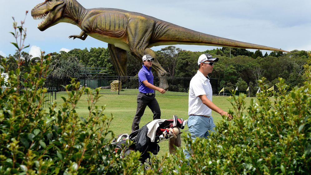 165 Dino-Figuren: Australiens Jurassic Park