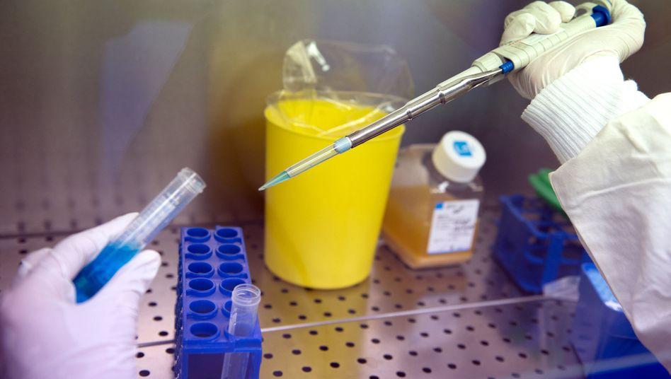 """Arbeiten im Labor am Universitätsklinikum Tübingen: """"Impfstoff-Test gegen Ebola vielversprechend"""""""