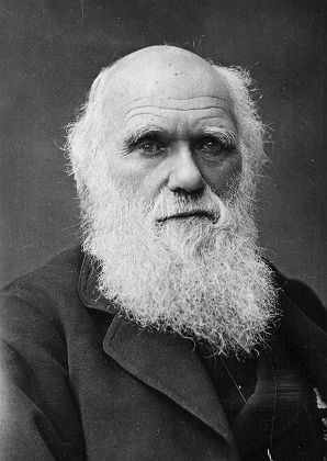 Darwin's complete works have been made available for free online.