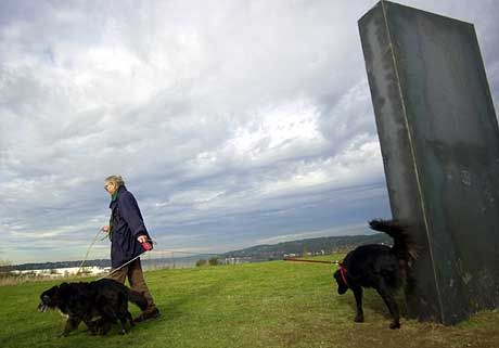 Weniger Respekt haben die örtlichen Hunde vor dem Kunstwerk, das Unbekannte in der Silvesternacht aufgestellt haben.