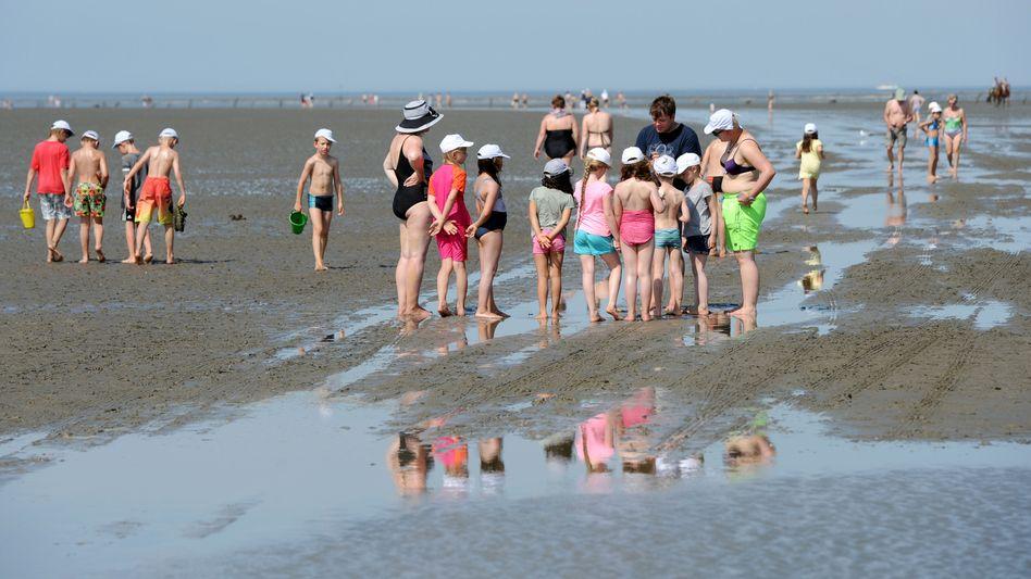 Kinder an der Nordsee