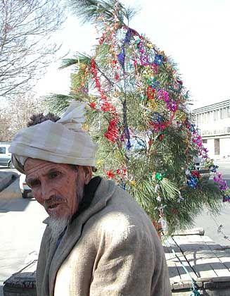 Ein Afghane bringt einen Christbaum zur französischen Botschaft in Kabul