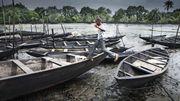 Fischer siegen gegen Shell