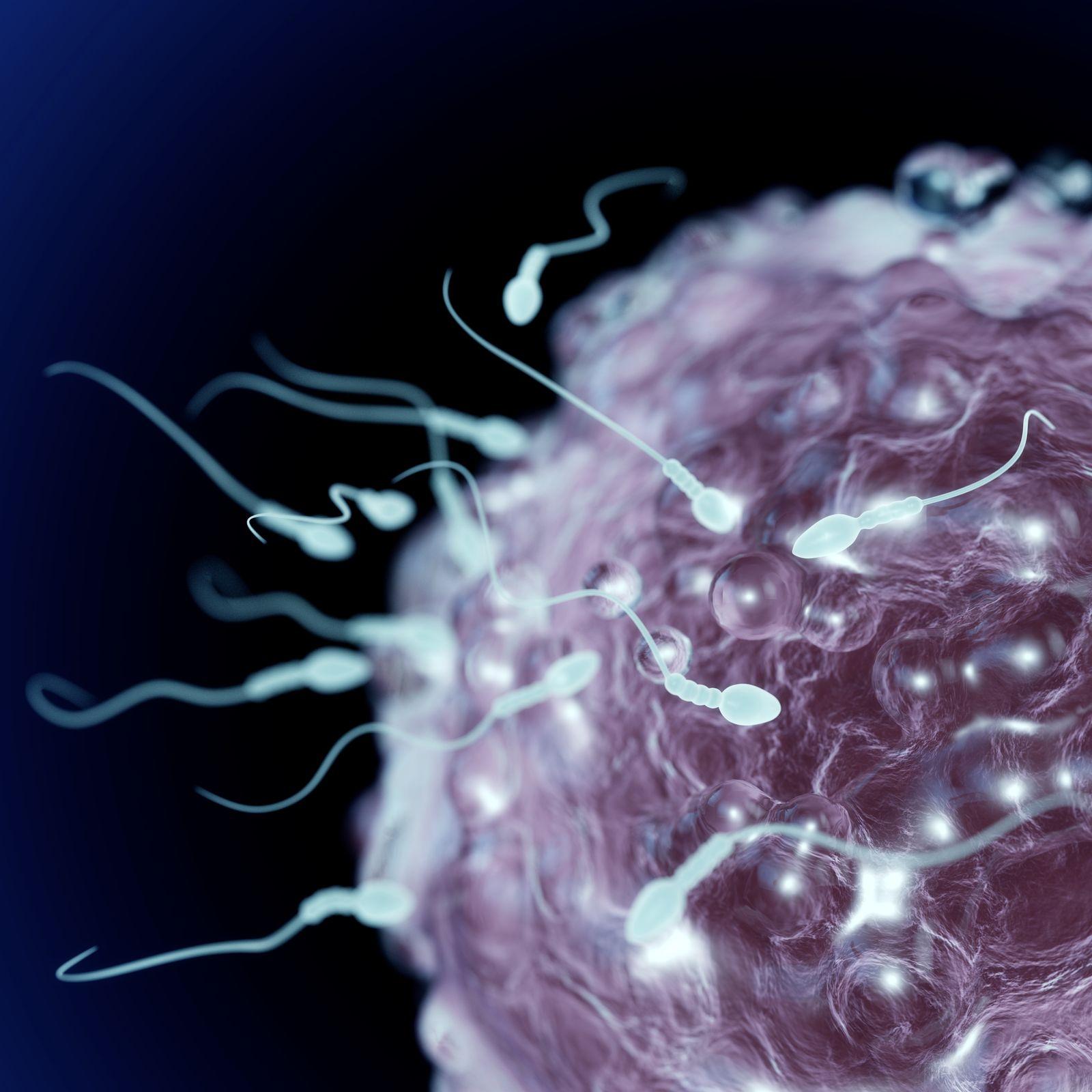 Sperma Ehefrau zweimal Ehemann macht Wegen einer