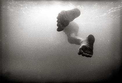 Er träumte, dass ihm Kiemen und Fischschwanz wuchsen, träumte, wie die Wellen ihn mitnahmen, weit hinaus aufs Meer
