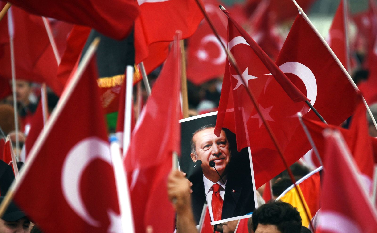 Erdogan Anhänger / Köln