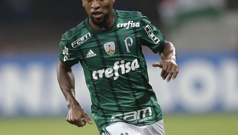 Zé Roberto