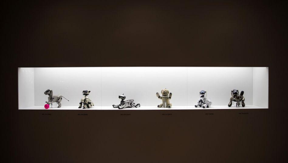 "Versionen des Roboterhunds ""Aibo"""