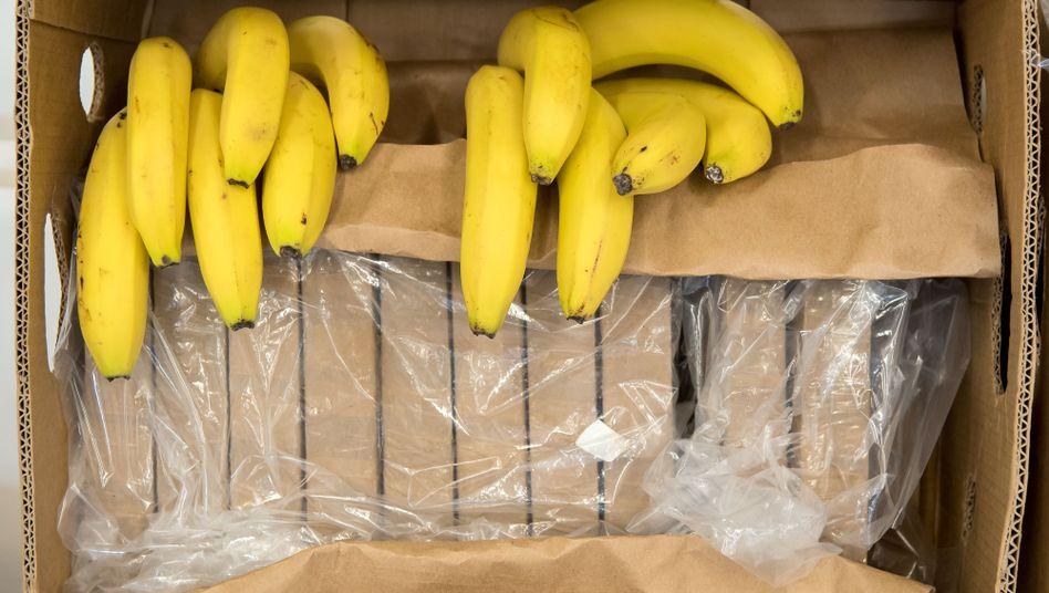 Neuer Bernhard-Aichner-Krimi: Koks statt Bananen