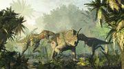 »Am Ende war der Tyrannosaurus ein Krüppel«