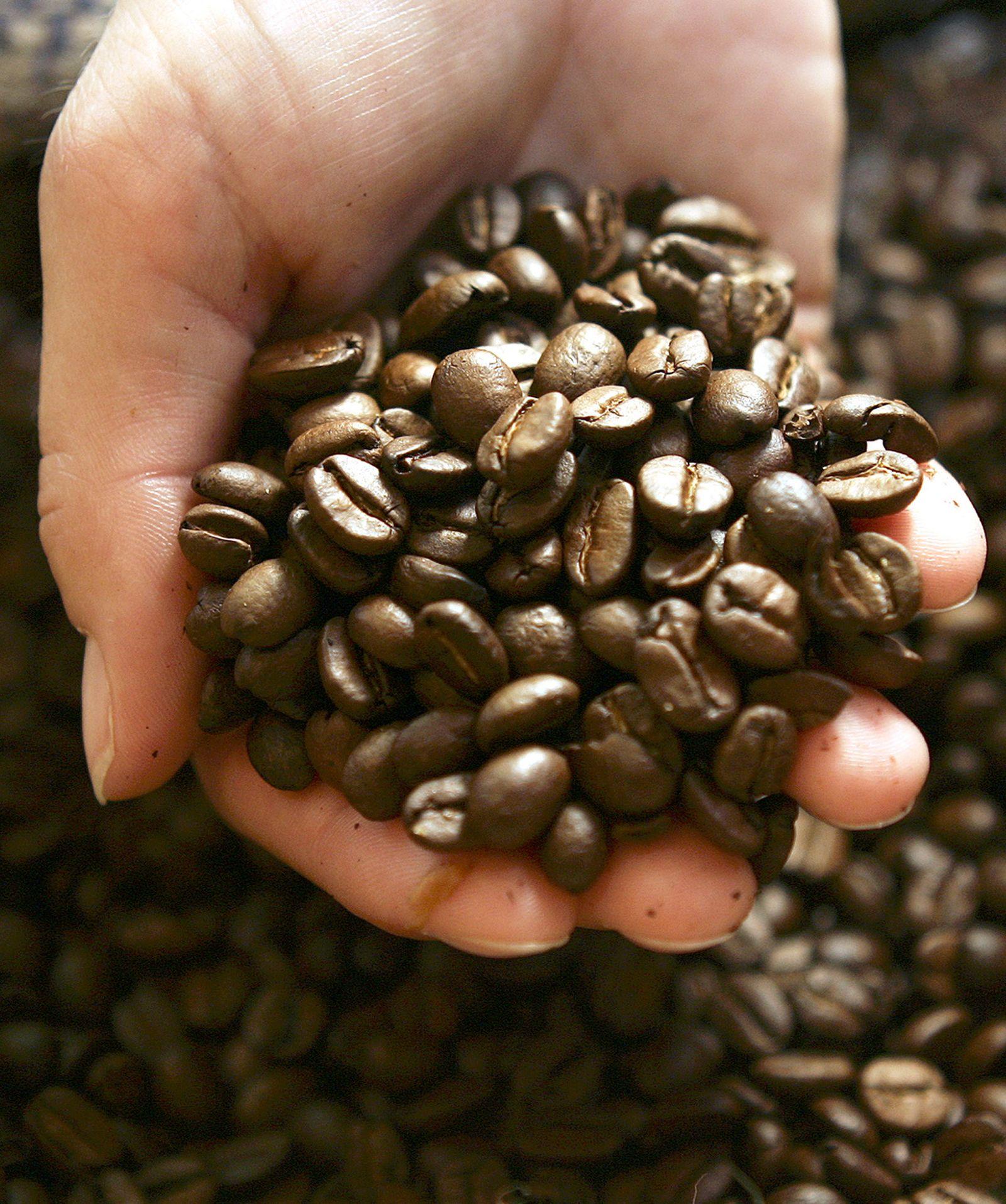 Kaffee / Bohne