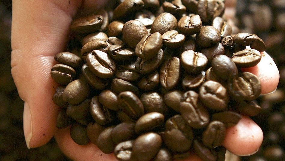 Kaffee: Wie senkt er das Prostatakrebs-Risiko?