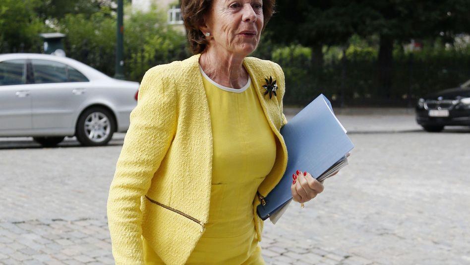 """EU-Kommissarin Neelie Kroes: """"Wir müssen besser aufpassen"""""""