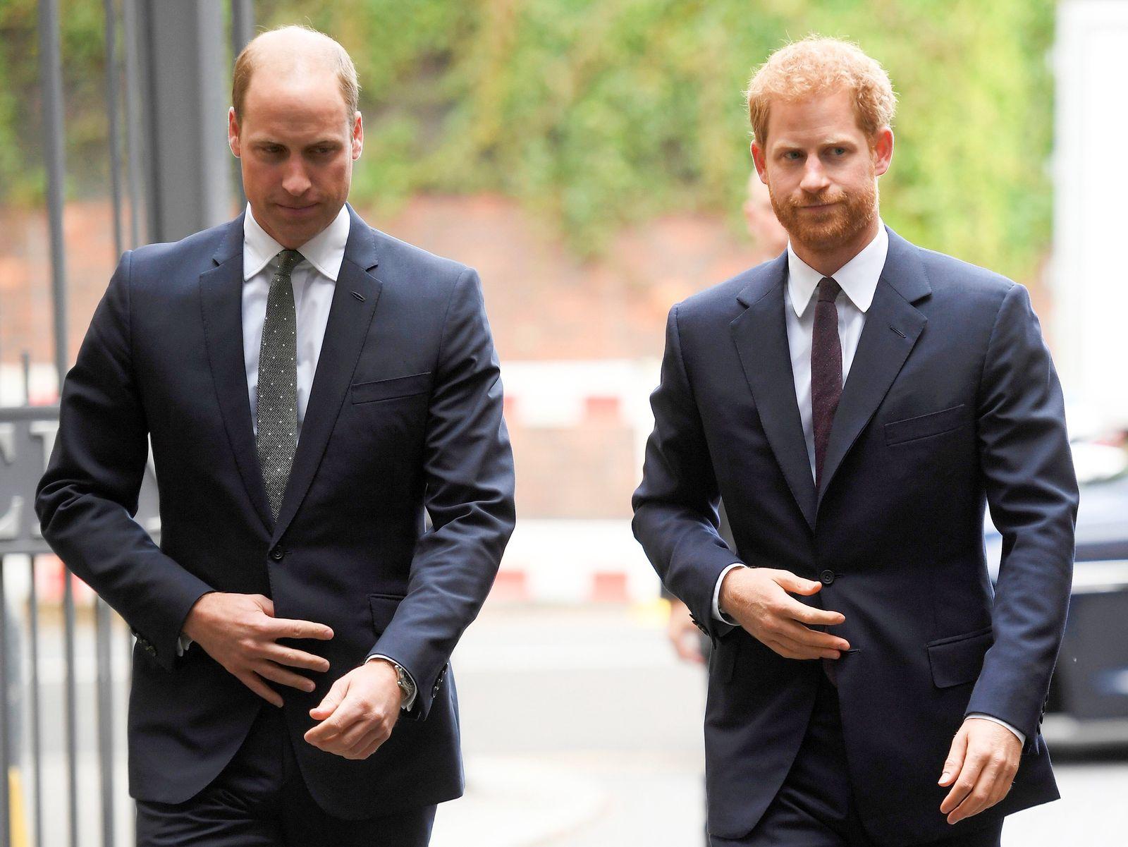 Prinz Harry und Prinz William empört über Zeitungsartikel