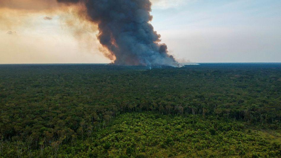 Feuer im Süden des Amazonas-Regenwaldes. Das Foto wurde Anfang August aufgenommen.
