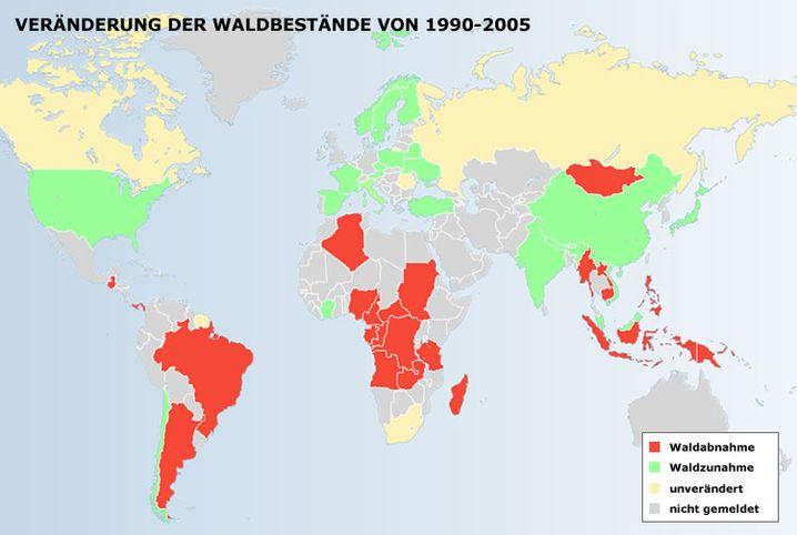 """Internationale Studie (November 2006): In 22 von 50 untersuchten Ländern wuchs der Wald wieder - Forscher sprechen von einer """"Wohlstandsschwelle"""""""