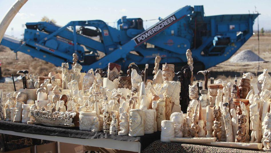 Beschlagnahmtes Elfenbein vor Zerkleinerer: Schmuggel nicht mehr dulden
