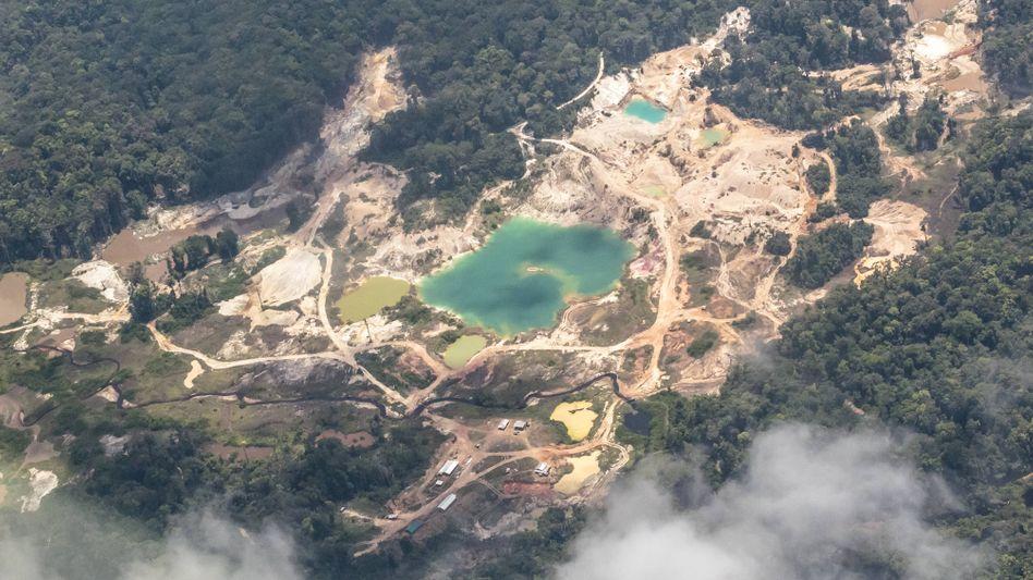 "Goldmine in Guyana: ""Immer etwas faul"""
