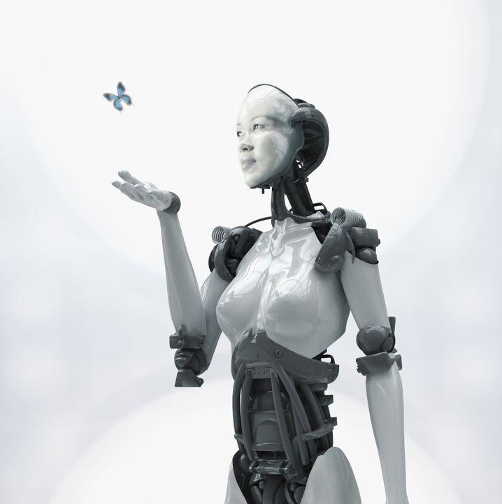 Roboter, Schmetterling: Klüger als wir selbst?