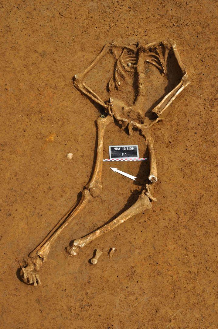 Gestorben am 18. Juni 1815: Das Skelett eines jungen Soldaten der Schlacht von Waterloo