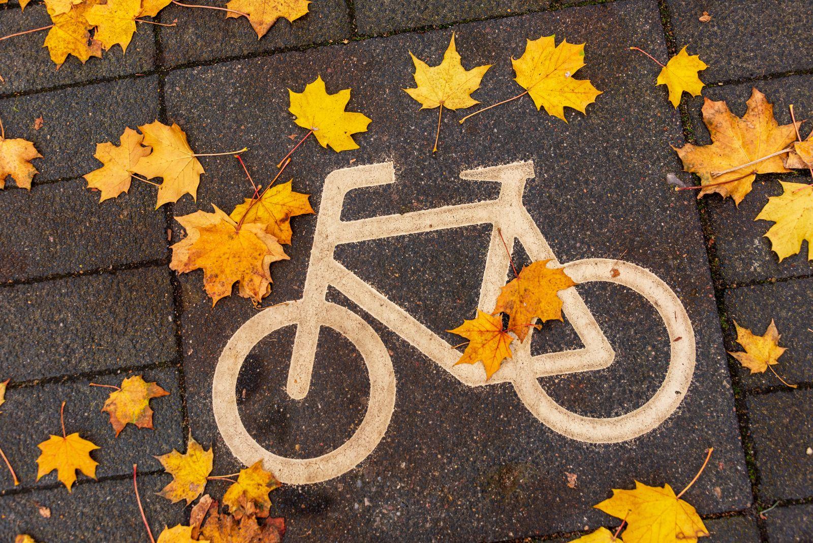 Kiel, 24. Oktober 2020 Kürzlich wurde Kiel von 10 norddeutschen Städten zur fahrradfreundlichsten Stadt gewählt. Um weit