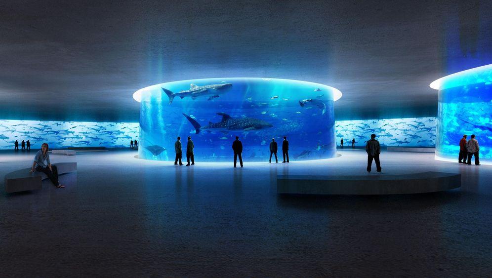 Aquatrium in New York: Acht Kuppeln, ein Eisberg