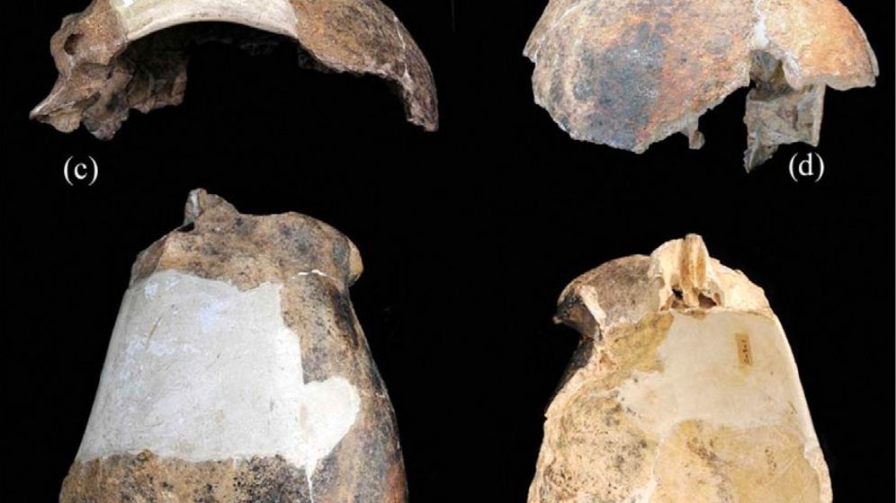 Maba-Mensch: Kopftreffer im Pleistozän
