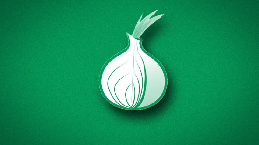 Zwiebelsymbol des Tor-Netzwerks: Server von Student im Visier der NSA