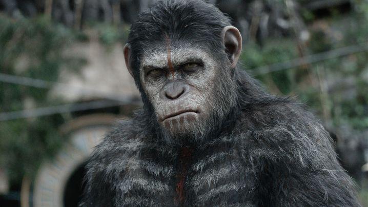 """""""Planet der Affen: Revolution"""": Menschen? Stören nur!"""