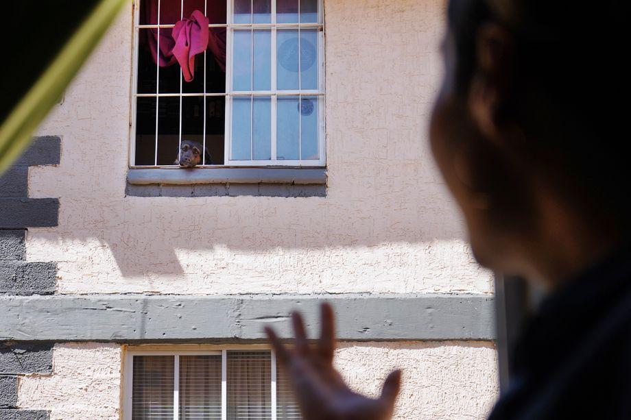 Wenig Raum: Von ihrer Wohnung aus blickt Lala Noguera auf die nächste Häuserwand