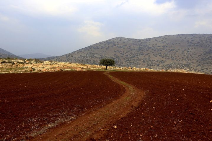 """Das Jordantal: """"Was würde mit den Millionen Palästinensern geschehen?"""""""