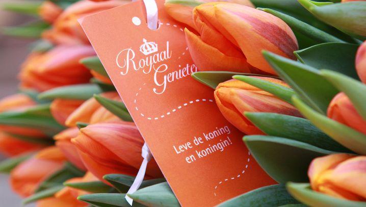Tulpen, Häuser, Aktien: Weltwirtschaftskrisen