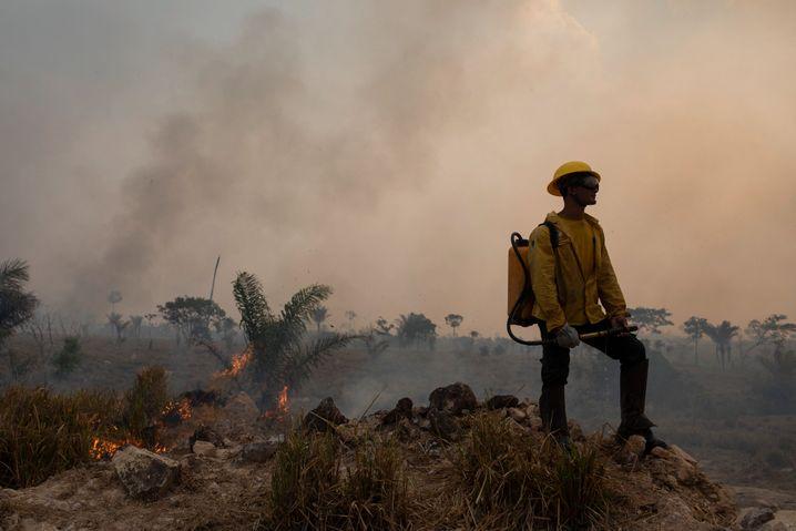 Brände im Regenwald in Brasilien im August 2020