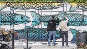 Weltweiter Fischkonsum klettert auf Rekordwert