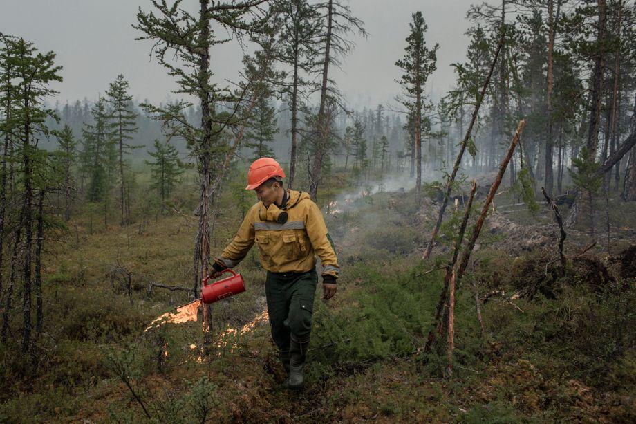 A fireman sets a backfire to help contain a forest fire near Yert.