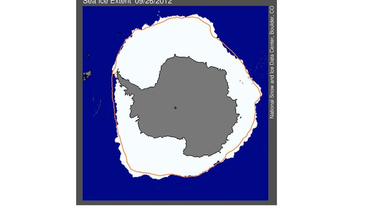 Rekord im Süden: Eisschollen breiten sich aus